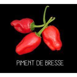 Piment de Bresse