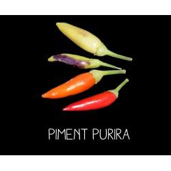 Piment Purira