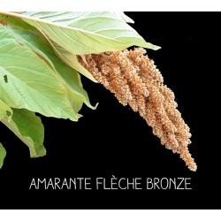 Amarante flèche bronze