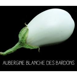 Aubergine blanche des Bardons