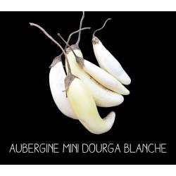 Aubergine mini dourga blanche