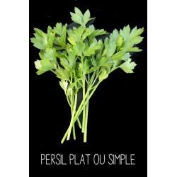 Persil plat ou simple -...