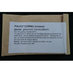 Pavot cornu - GL AUCIUM...