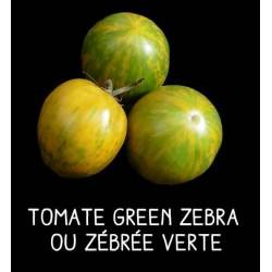 Tomate green zebra ou...