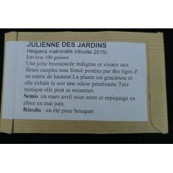 Julienne des jardins -...