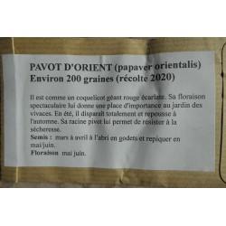 Pavot d'Orient - PAPAVER...
