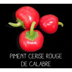 Piment cerise rouge de Calabre